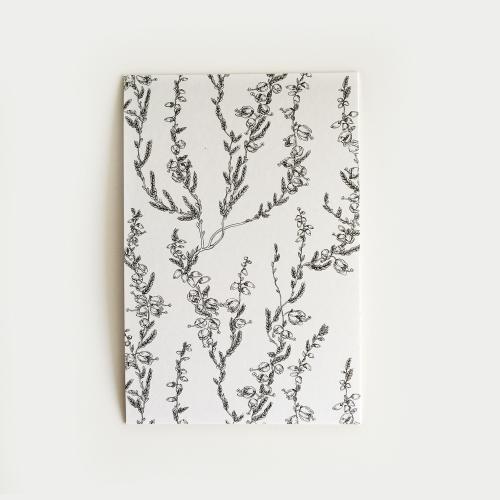 Kanerva postikortti, valkoinen