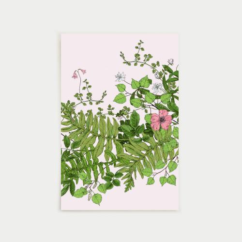 Metsäseppele postikortti, nude