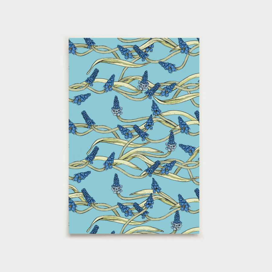 Helmililjakumpu postikortti, aqua