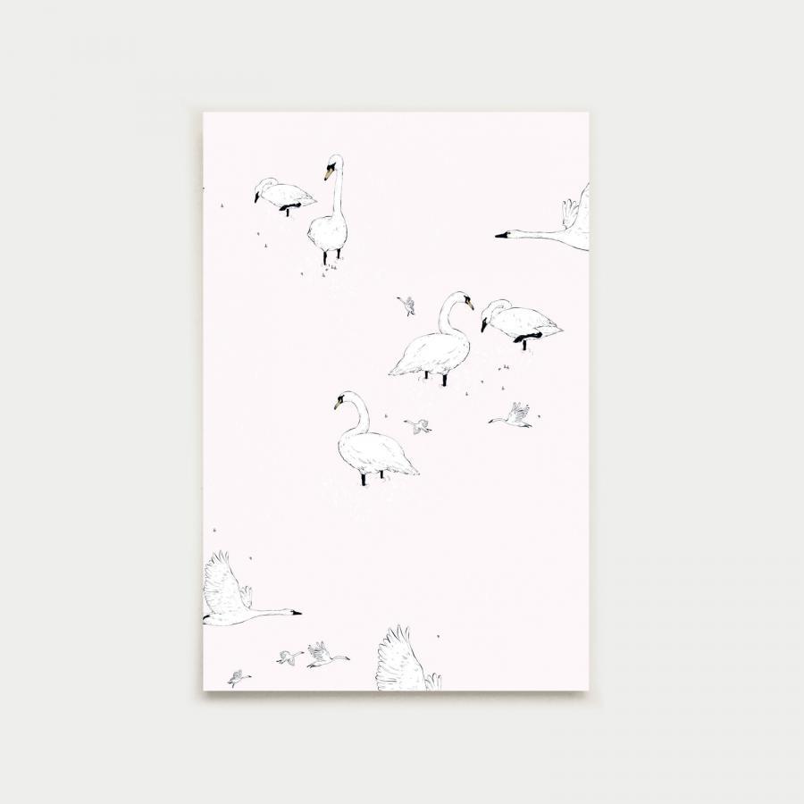 Joutsenlampi postikortti, nude