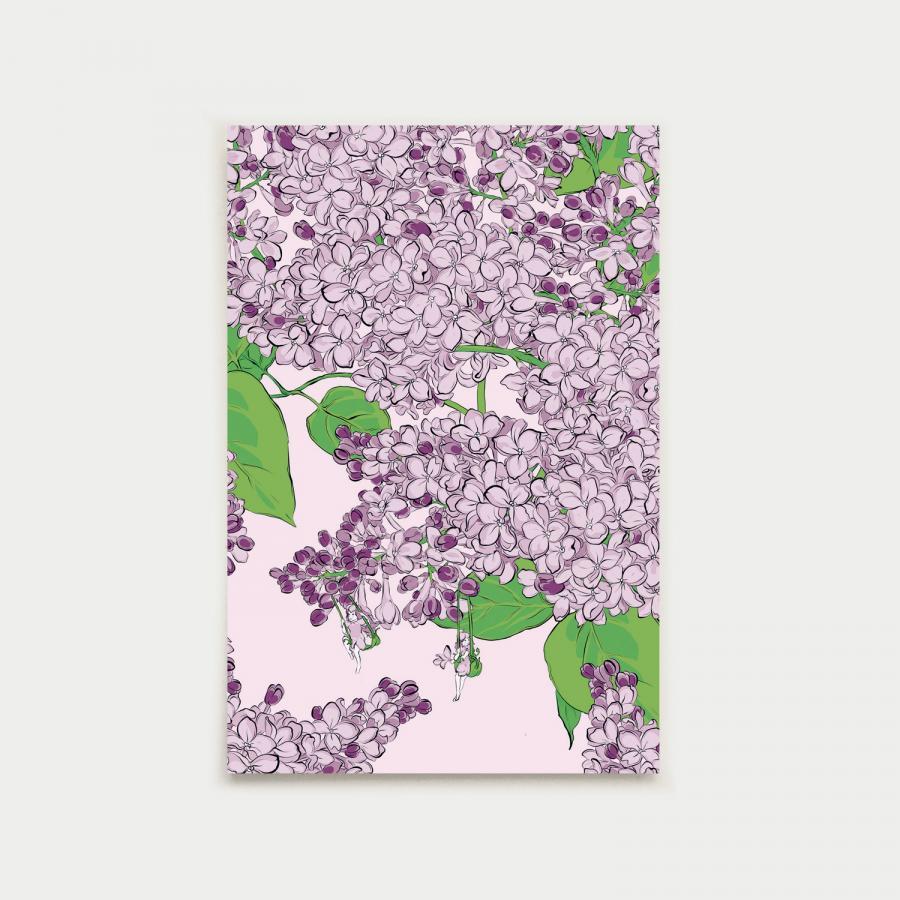 Pihasyreeni postikortti, lila